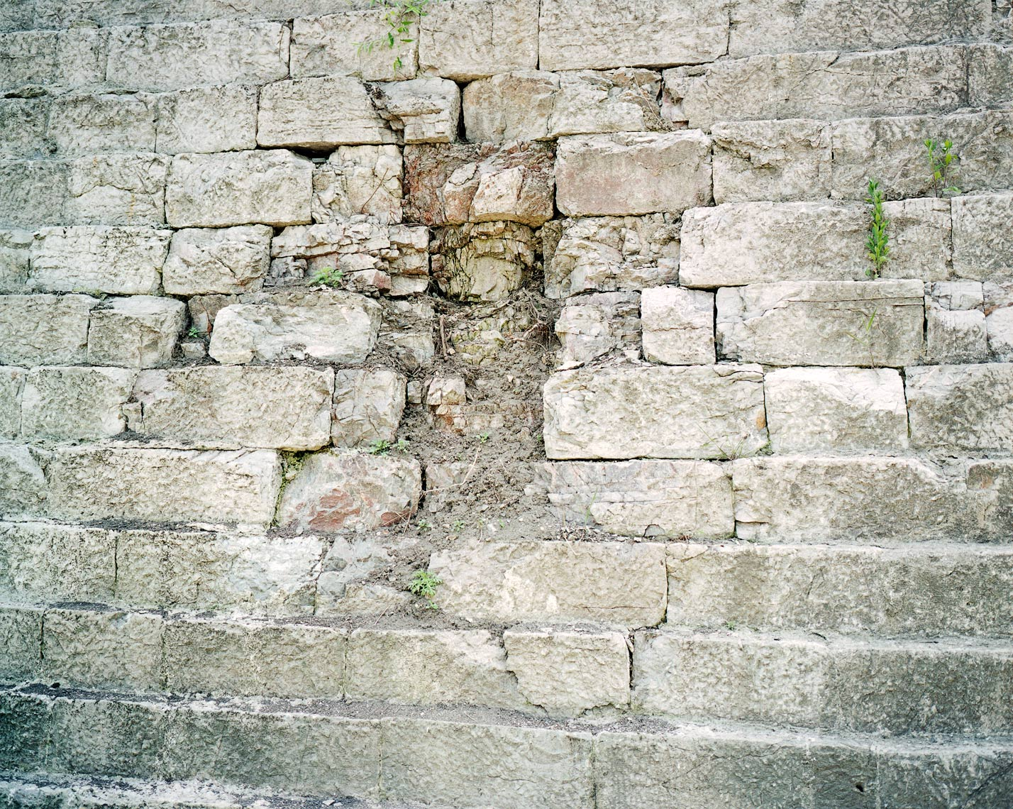 Old city wall, 2009